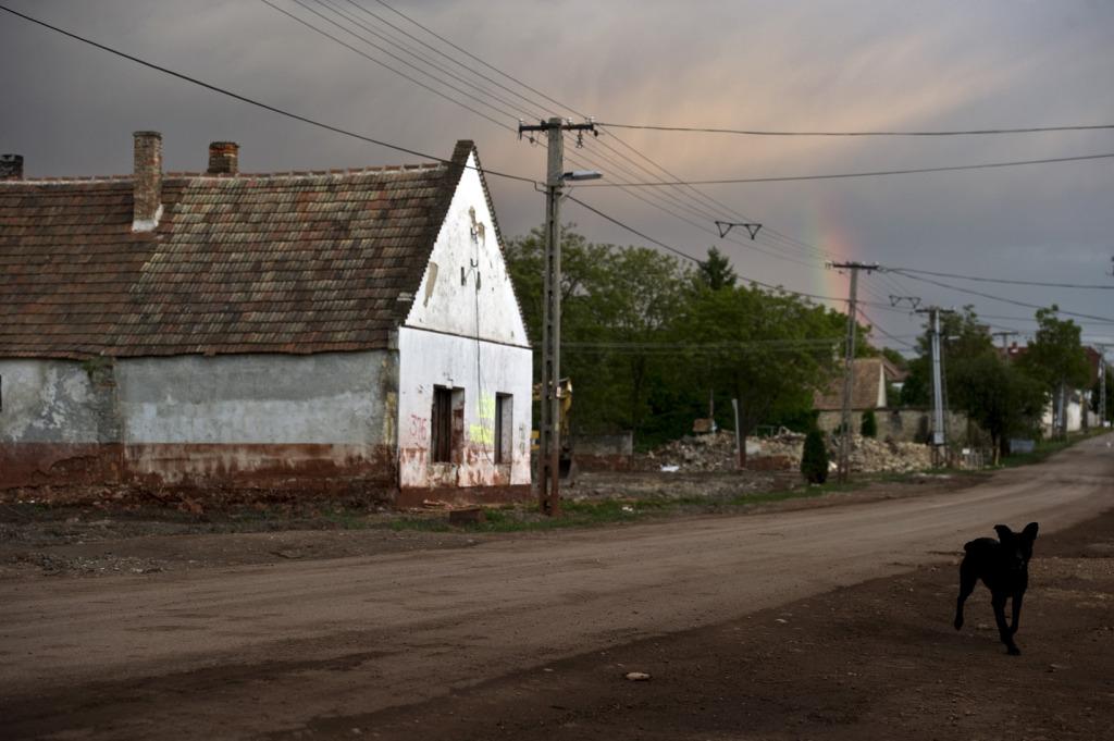 Elhagyott ház Devecseren 2011 májusában   Fotó: Hajdú D. András