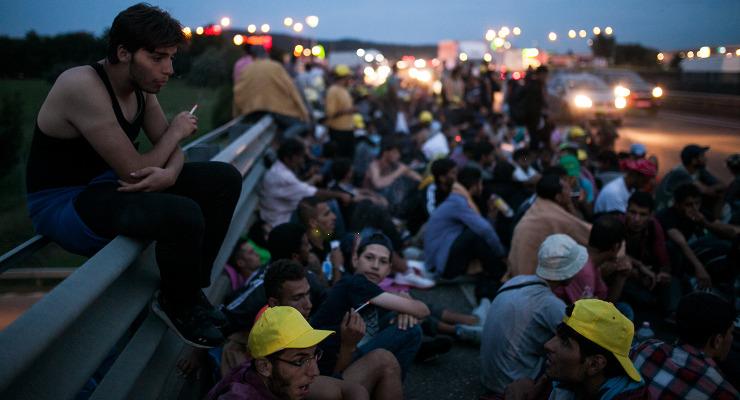 Hiénák híznak a menekültek pénzén
