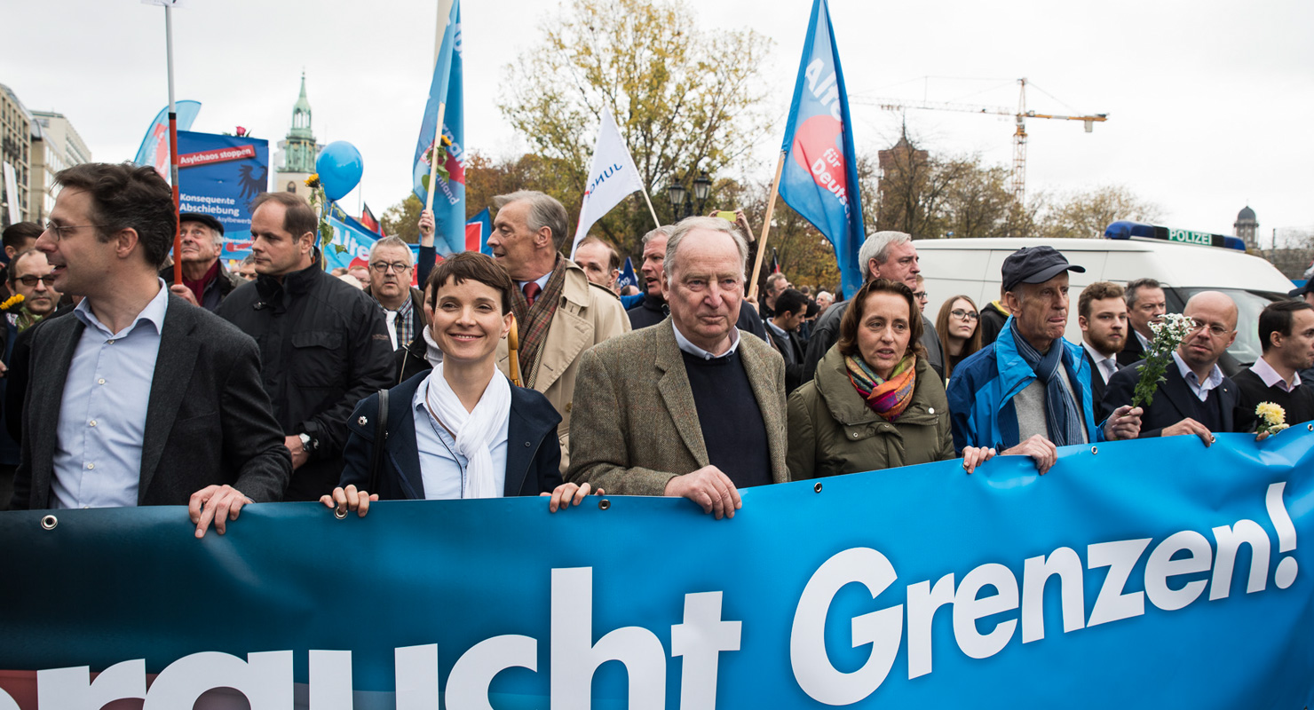 Alternative für Deutschland (AfD) tüntetés Berlinben, 2015 novemberében. Forrás: flickr.com/James Rea CC-BY-NC-ND https://www.flickr.com/photos/james_rea/22765282190