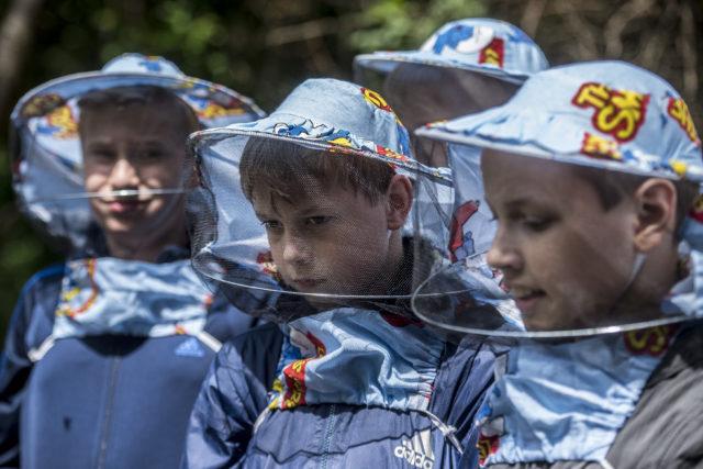 Méhekkel állítanák meg a külföldre készülő fiatalokat 1