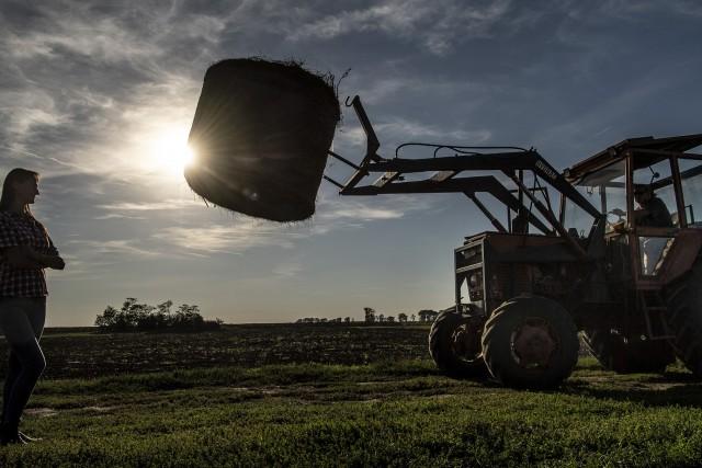 Jól megszívatta az állam a földjeit használó gazdákat, amikor túladott a területeken 1