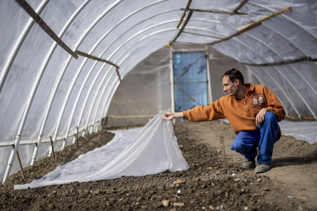 Szociális farmon adnak munkát az autista fiataloknak