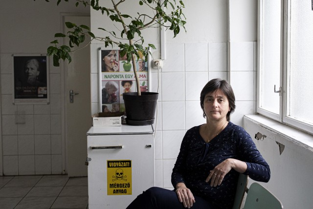 A demens időseknek a kórház nem egy gyógyító hely ( JÓVÁ van HAGYVA)